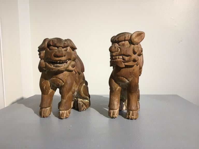 Japanese Edo Period Carved Wood Foo Lion Dogs, Komainu, Early 19th Century, Pair In Fair Condition For Sale In Austin, TX