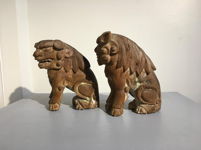 Cypress Japanese Edo Period Carved Wood Foo Lion Dogs, Komainu, Early 19th Century, Pair For Sale