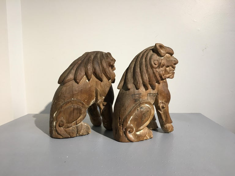 Japanese Edo Period Carved Wood Foo Lion Dogs, Komainu, Early 19th Century, Pair For Sale 1