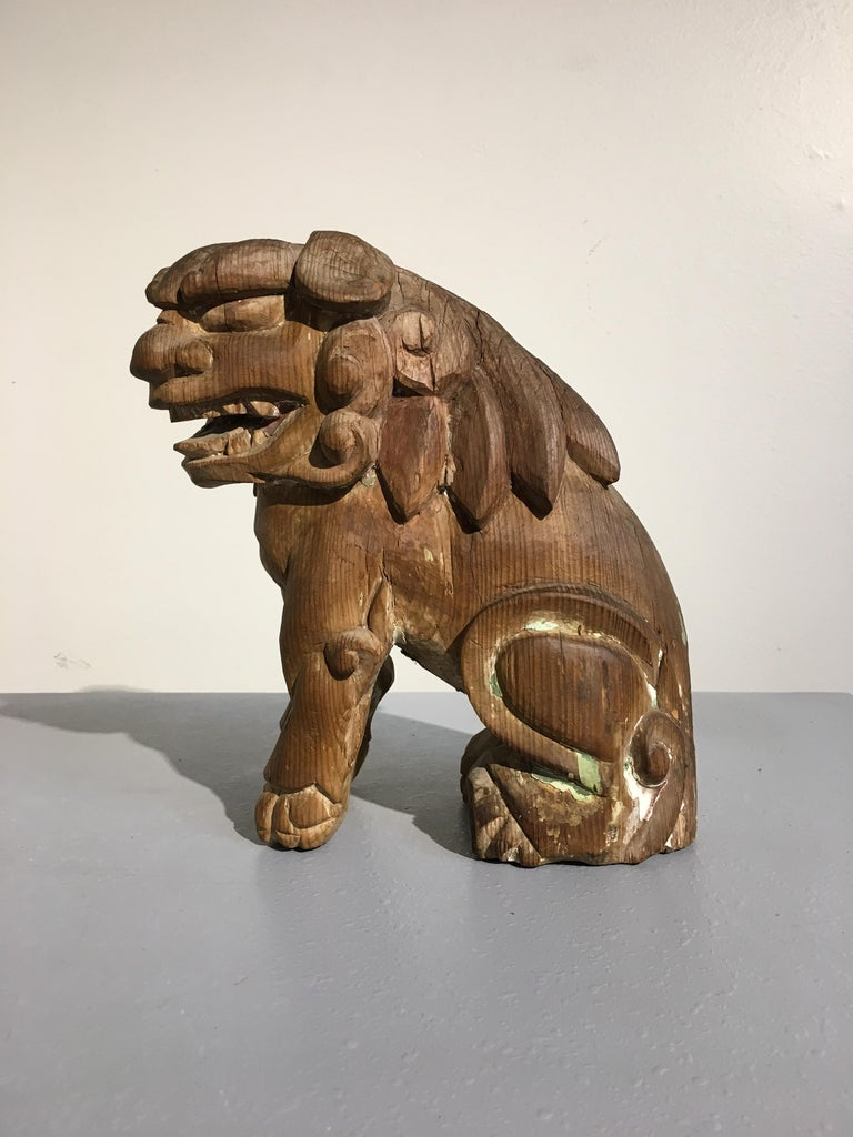 Japanese Edo Period Carved Wood Foo Lion Dogs, Komainu, Early 19th Century, Pair For Sale 4