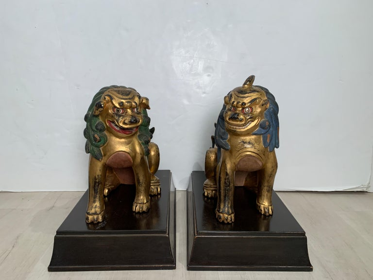 A charming and mischievous pair of Japanese carved, gilt and painted komainu, Showa Period, 1920's, Japan.   The two komainu, or guardian lions, are portrayed seated upon their haunches, heads slightly turned. The two beasts are well carved, with