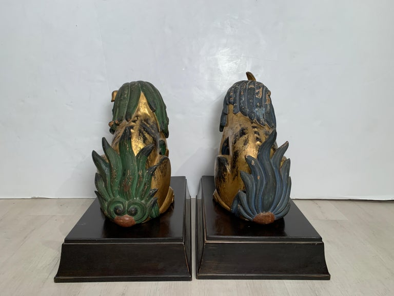 Pair of Japanese Gilt Wood Komainu, Guardian Lions, Early 20th Century, Japan In Fair Condition For Sale In Austin, TX