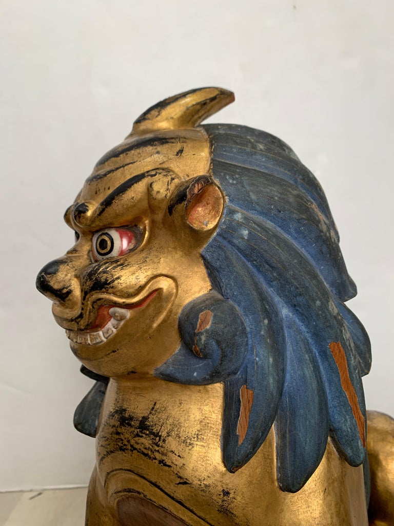 Pair of Japanese Gilt Wood Komainu, Guardian Lions, Early 20th Century, Japan For Sale 3