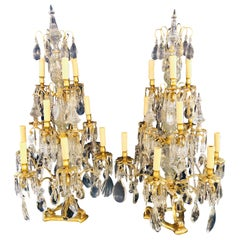 Pair of Large Louis XVI Style 12-Light Candelabrum Table Lamps Brass and Crystal