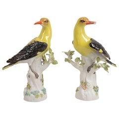 Pair of Late 19th Century Meissen Oriel Birds