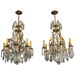 Pair of 19th Century Louis XV Chandeliers Gilt Bronze and Crystal