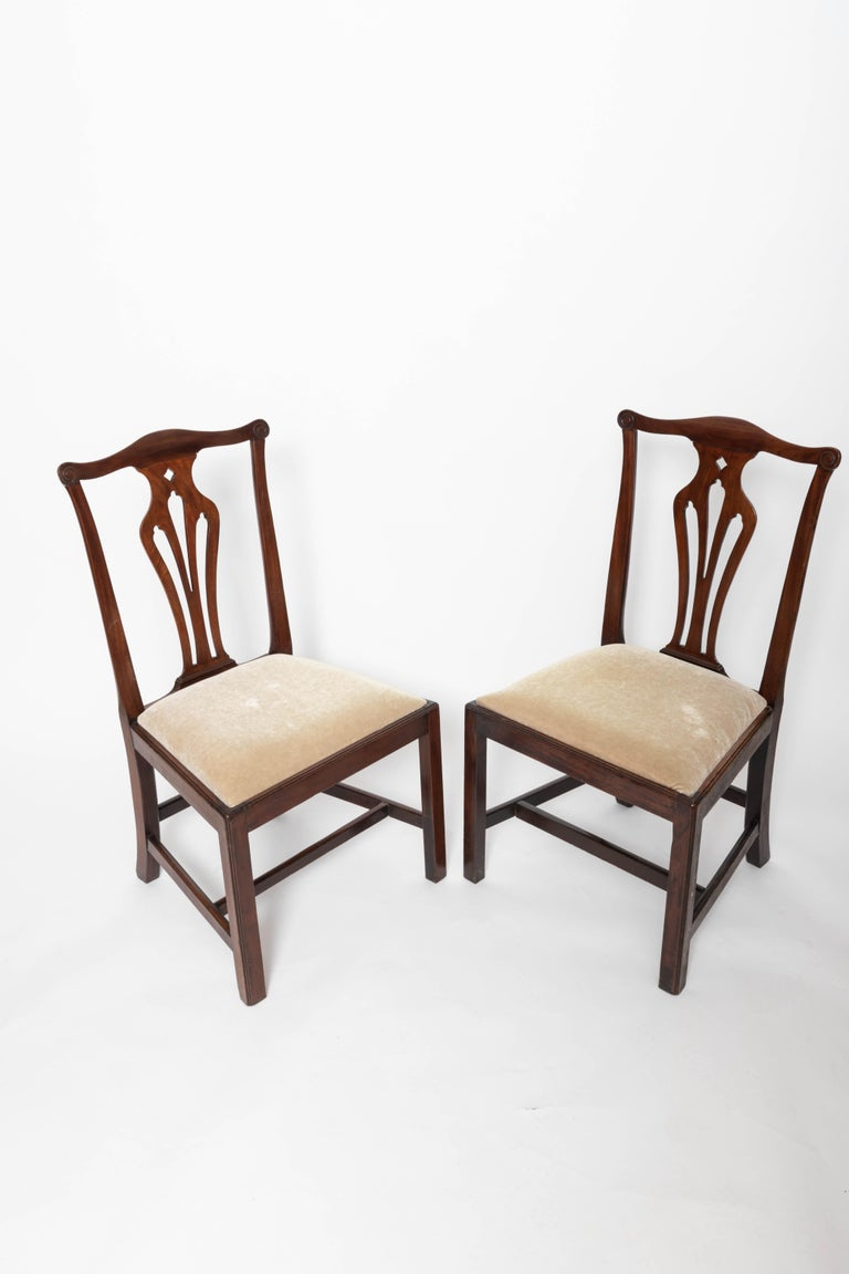 Squared leg with stretcher, dropped seat, splayed back legs, rounded carved back splat, upholstered in beige mohair.