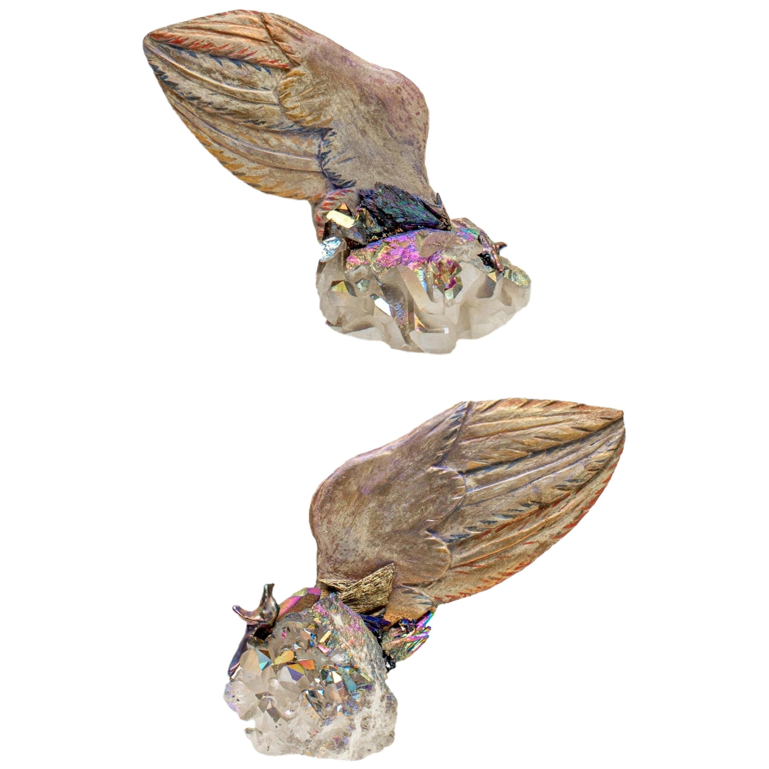 Pair of 18th Century Italian Angel Wings on Titanium Quartz with Kyanite