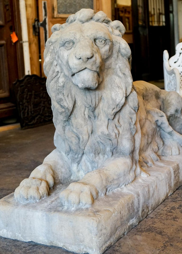 This pair of 18th century Italian lions have incredible detail's and likeness to their subject. Details are exquisitely rendered throughout these pieces, from the lion's mane to its paws. This pair would work exceptionally well in a garden setting,
