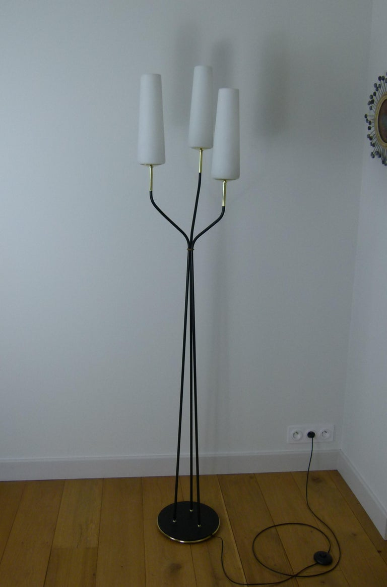 Pair of 1950s Floor Lamp with Three Lighted Arms by Maison Lunel For Sale 3
