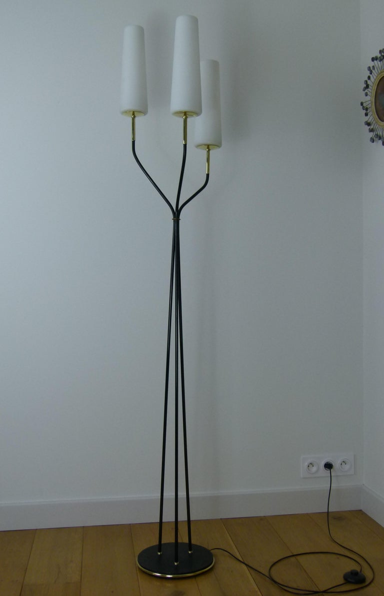 Pair of 1950s Floor Lamp with Three Lighted Arms by Maison Lunel For Sale 4