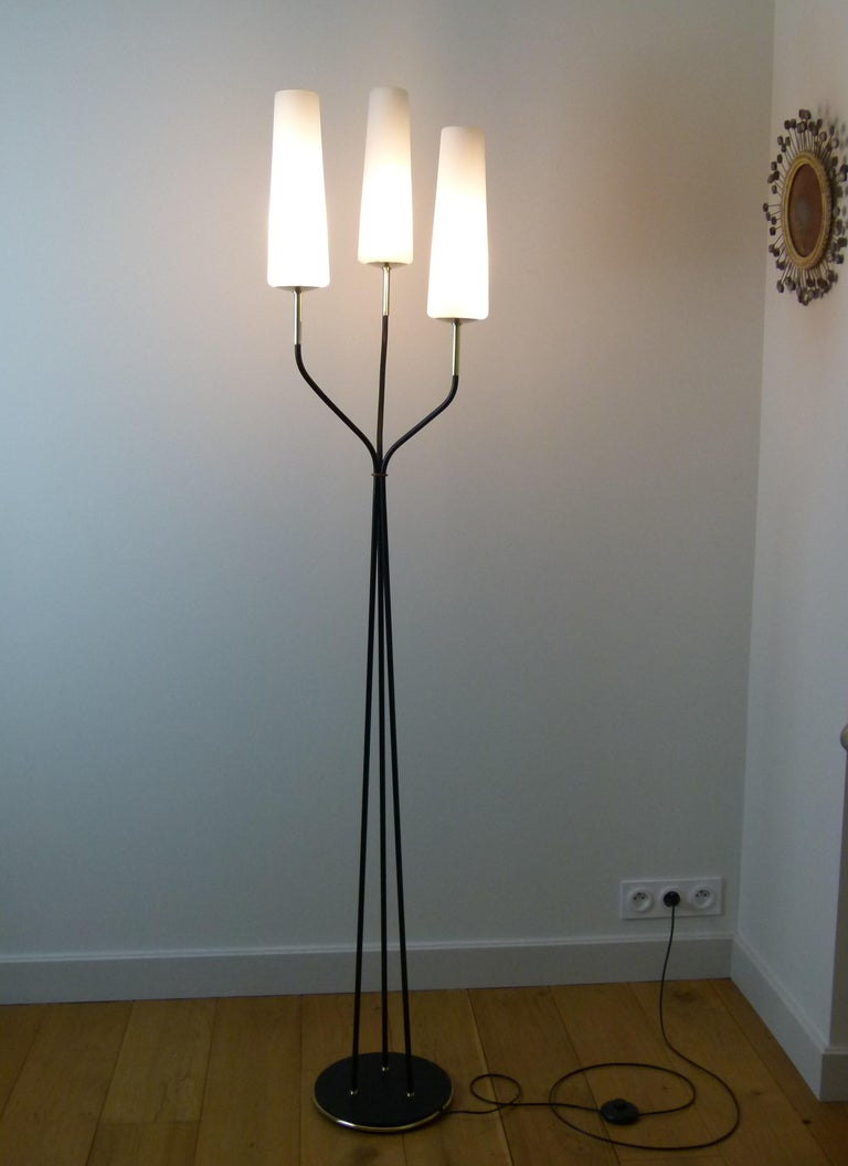 Pair of floor lamp with three lights in black lacquered metal and brass, composed of a circular base in hammered cast iron set with a brass ring, on which leave 3 lacquered metal arm lights that join in their upper part, and starting to flare out of
