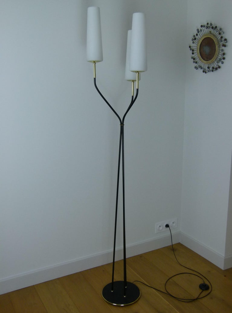 Metal Pair of 1950s Floor Lamp with Three Lighted Arms by Maison Lunel For Sale