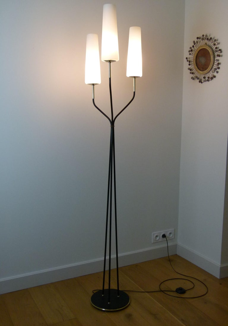 Pair of 1950s Floor Lamp with Three Lighted Arms by Maison Lunel For Sale 1