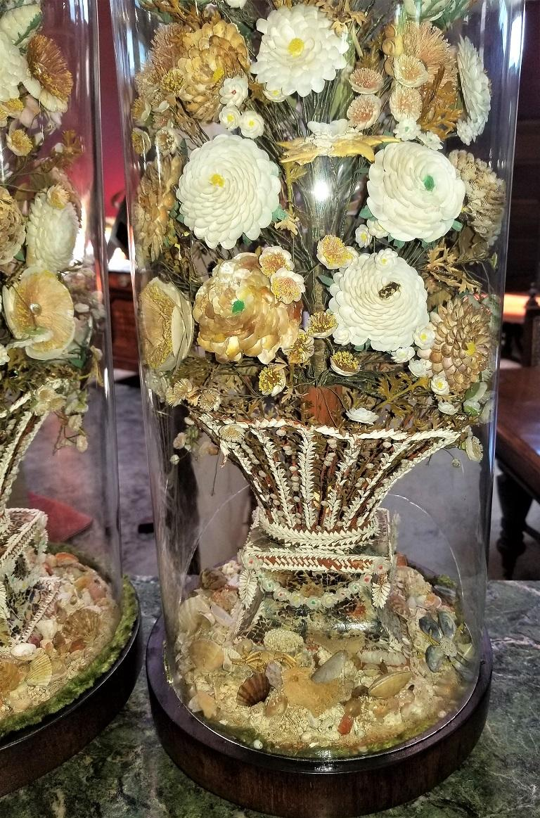 Pair of 19th Century Shell Art Floral Bouquets under Glass Domes For Sale 7
