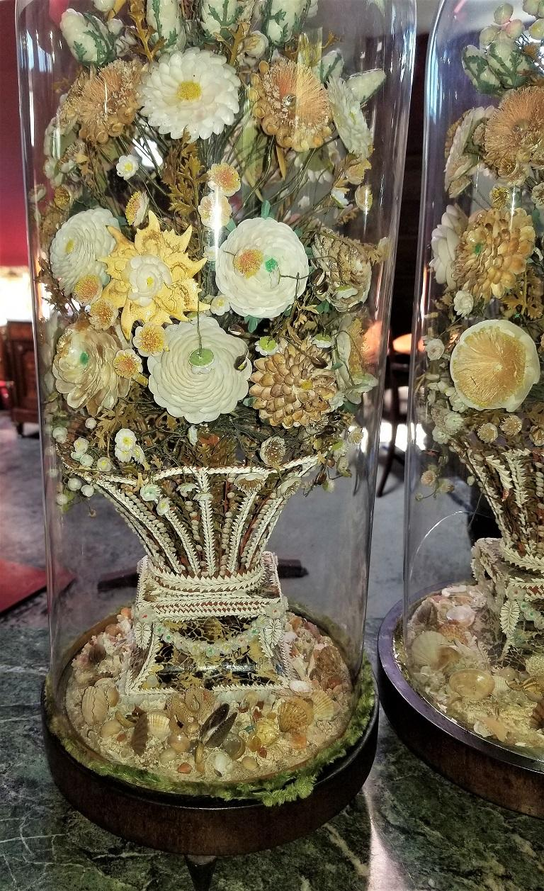 Pair of 19th Century Shell Art Floral Bouquets under Glass Domes For Sale 13