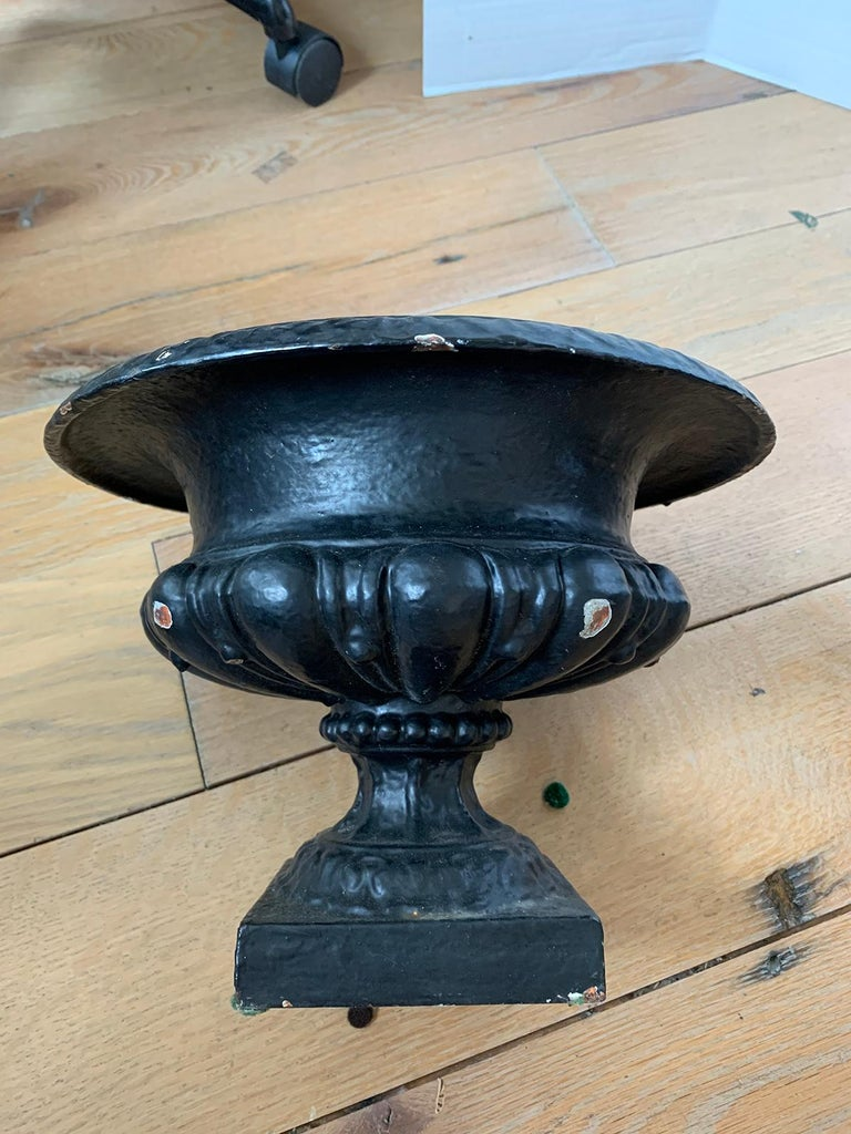 Pair of 19th-20th Century Neoclassical Iron Urns For Sale 4