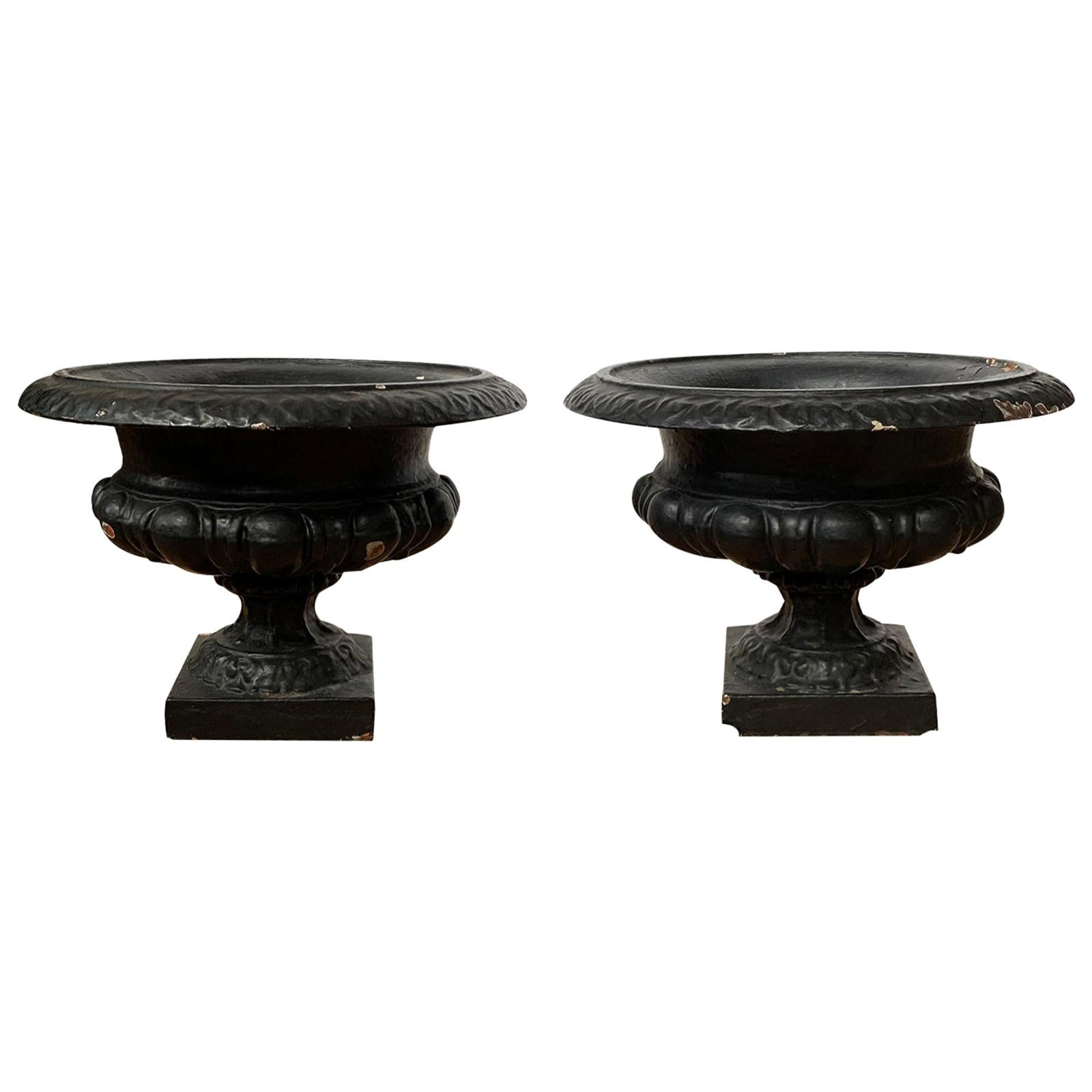 Pair of 19th-20th Century Neoclassical Iron Urns