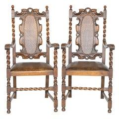 Animal Skin Chairs