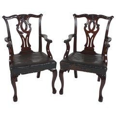 Pair of 19th Century Chippendale Design Carved Mahogany Elbow Chairs