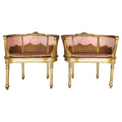 Pair of 19th Century Armchairs in Golden Wood