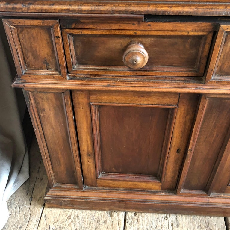 Pair of 19th Century Bookcase Cabinets with Center Shelves For Sale 2