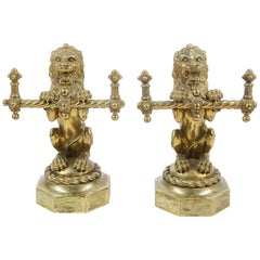Pair of 19th Century Brass Lion Fire Dogs