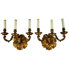 Pair of 19th Century Bronze Doré Three-Arm Sconces
