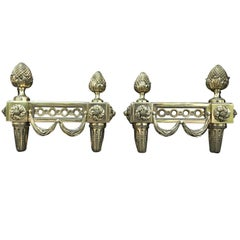 Pair of 19th Century Bronze Empire Style Chenets