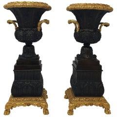 Pair of 19th Century Bronze Urns