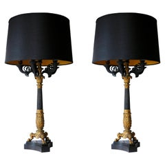 Pair of 19th Century Charles X Bronze Doré Candelabra Lamps