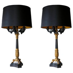 Pair of 19th Century Charles X Bronze Doré Candelabra Lamps