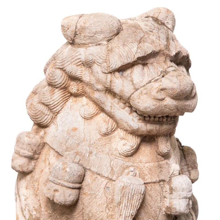 Limestone Pair of 19th Century Chinese Guardian Lion Dogs with Cubs For Sale
