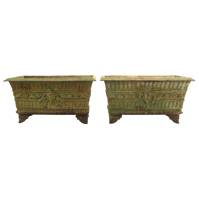 Pair of 19th Century Classical Cast Iron Planters