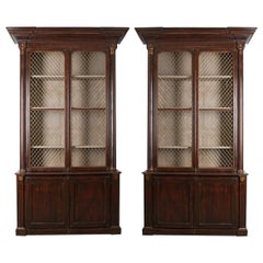 Pair of 19th Century English Regency Library Bookcases