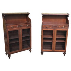 Pair of 19th Century English Regency Mahogany Cabinets