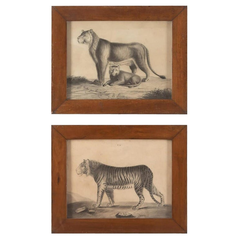 Pair of 19th Century Etchings of a Lion and a Tiger For Sale