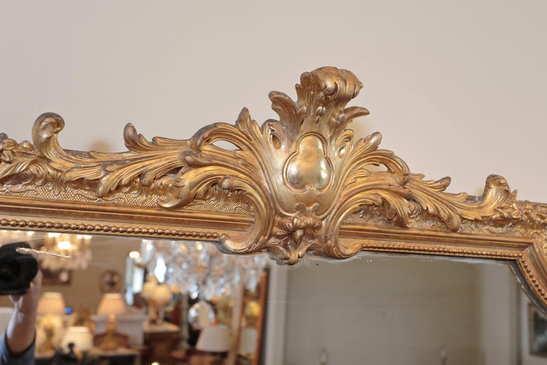 Giltwood Pair of 19th Century Fine Louis XVI Gilt Carved Large Mirrors For Sale