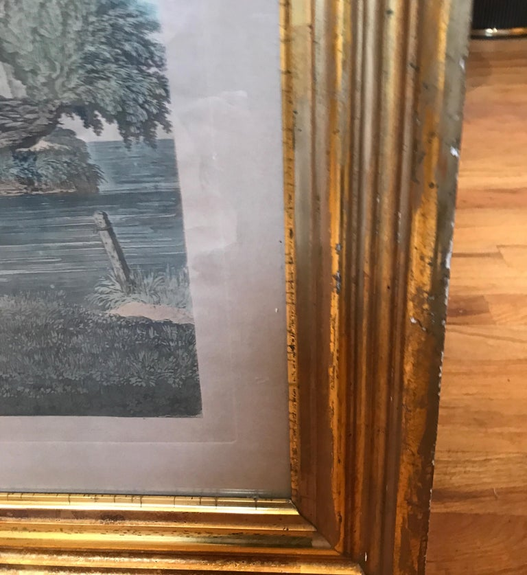 Pair of 19th Century Fishing Prints in Original Classic American Giltwood Frames For Sale 2