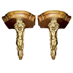 Pair of 19th Century French Bronze and Wood Wall Brackets