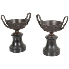 Pair of 19th Century French Bronze Tazza Urns on Marble Bases
