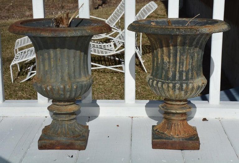 Pair of classic form antique French cast iron garden urns, planters or jardinières. Wonderful aged patina. A great addition to any garden or room.