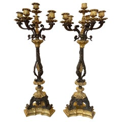 Pair of 19th Century French Empire Gilt Bronze 6-Light Candelabras