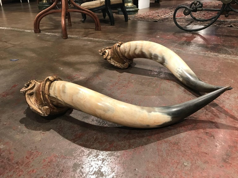 Hand-Carved Pair of 19th Century French Horns Mounted on Carved Giltwood Plaques For Sale