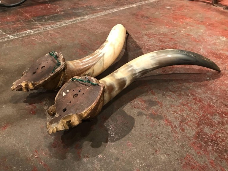 Pair of 19th Century French Horns Mounted on Carved Giltwood Plaques For Sale 4