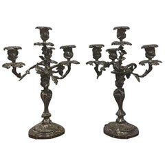 Pair of 19th Century French Louis XV Bronze Silvered Bronze Candelabra