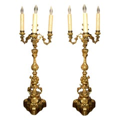 Pair of 19th Century French Louis XV Style Gilt Bronze Candelabra