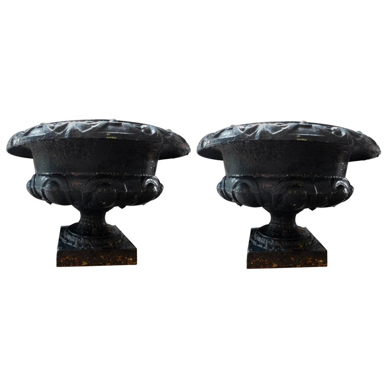 Pair of 19th Century French Neoclassical Medici Style Cast Iron Garden Urns For Sale
