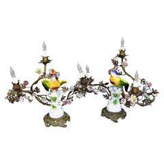 Pair of 19th Century French Porcelain Parrot and Floral Lamps