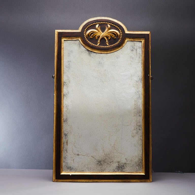 European Pair of 19th Century Gilt and Ebonized Mirrors For Sale